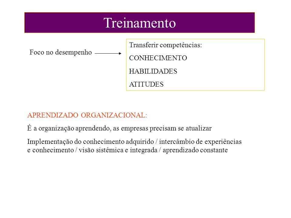 Treinamento Transferir competências: CONHECIMENTO Foco no desempenho