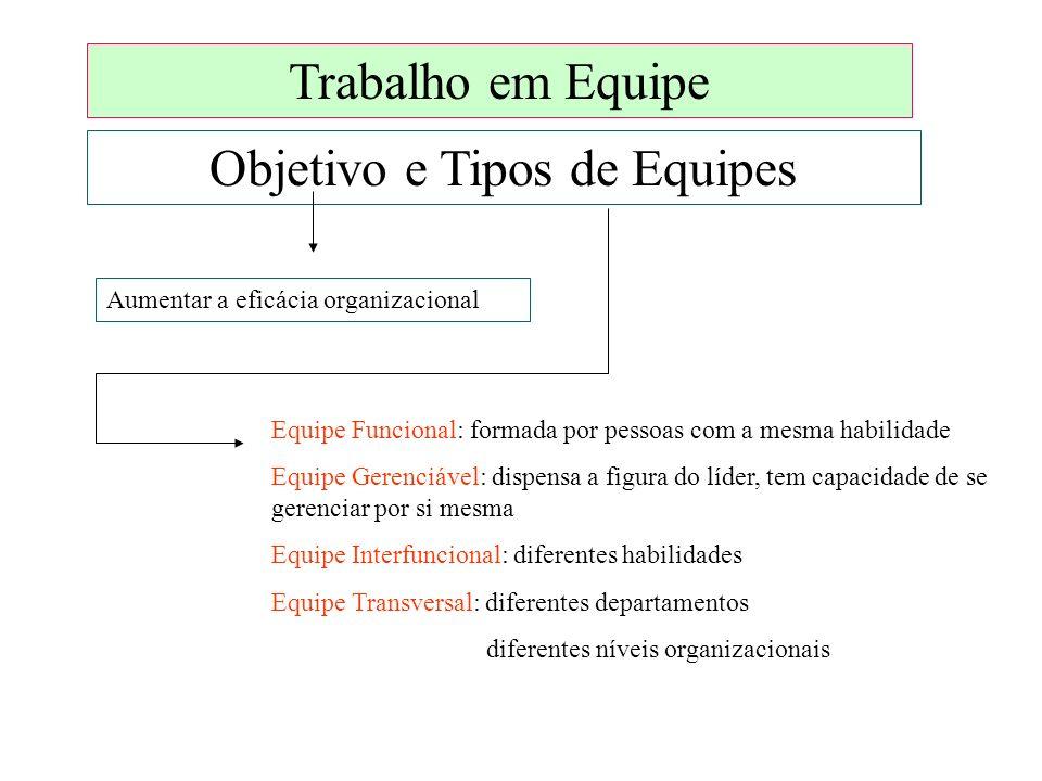 Objetivo e Tipos de Equipes