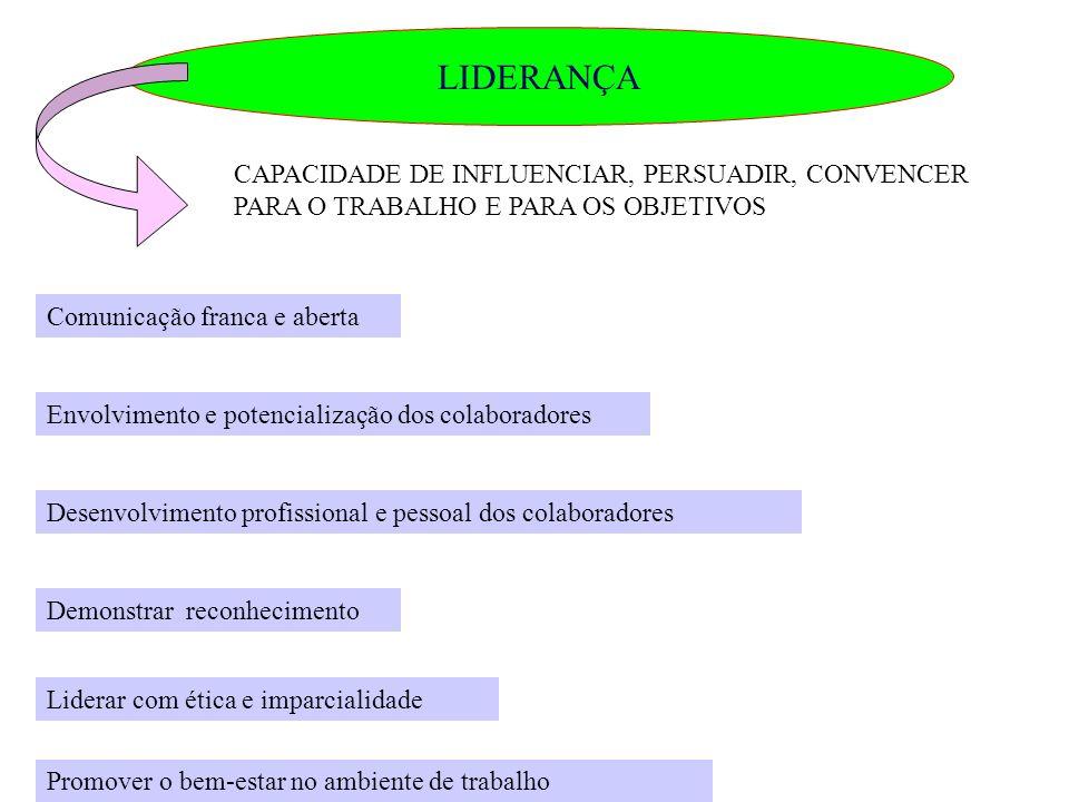 LIDERANÇA CAPACIDADE DE INFLUENCIAR, PERSUADIR, CONVENCER PARA O TRABALHO E PARA OS OBJETIVOS. Comunicação franca e aberta.