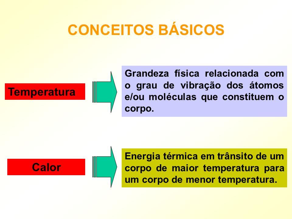 CONCEITOS BÁSICOS Temperatura Calor