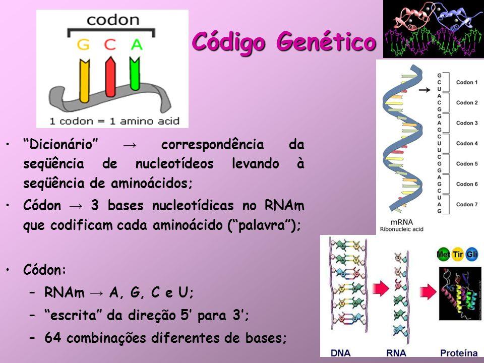 Código Genético Dicionário → correspondência da seqüência de nucleotídeos levando à seqüência de aminoácidos;