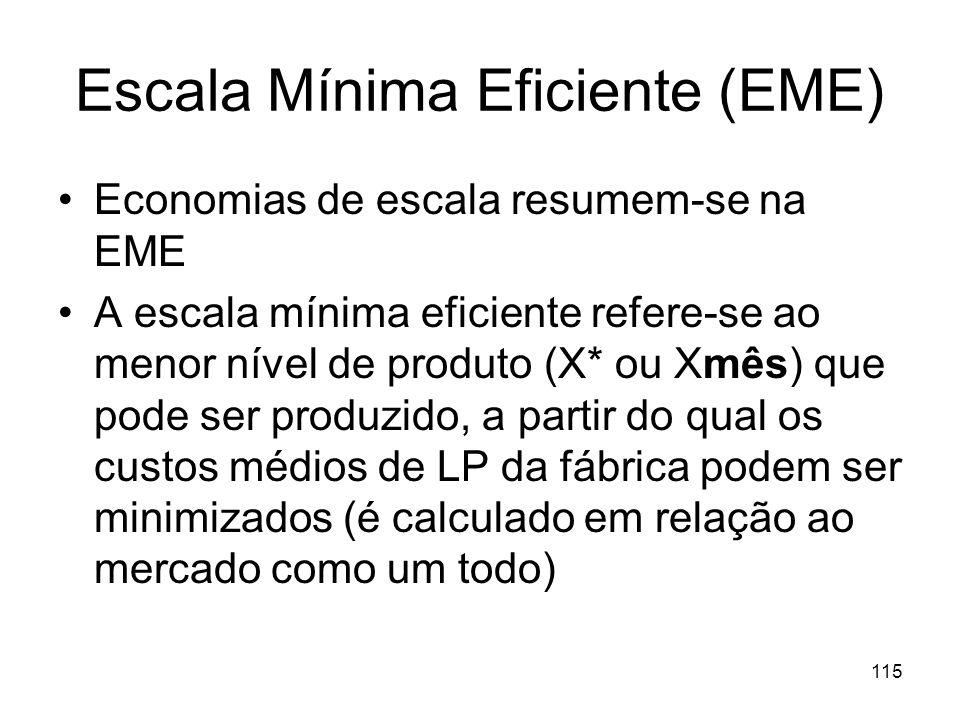 Escala Mínima Eficiente (EME)