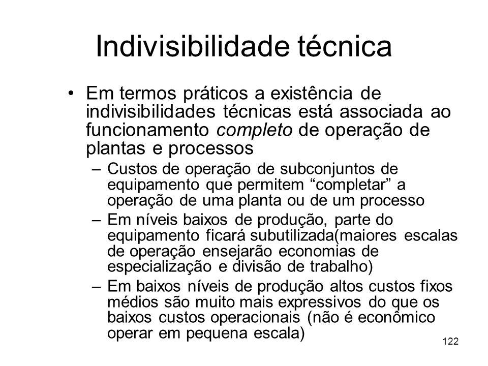 Indivisibilidade técnica