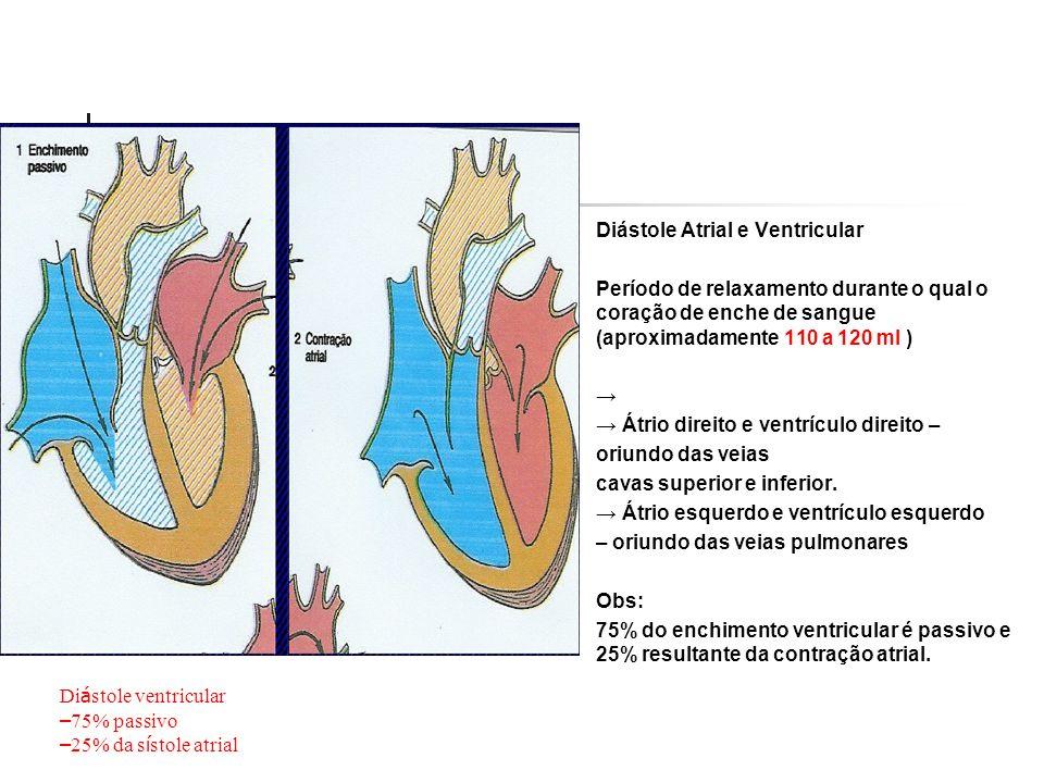 Diástole Atrial e Ventricular