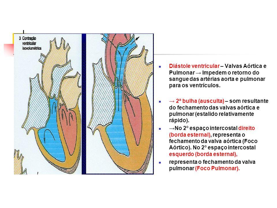 Diástole ventricular – Valvas Aórtica e Pulmonar → Impedem o retorno do sangue das artérias aorta e pulmonar para os ventrículos.