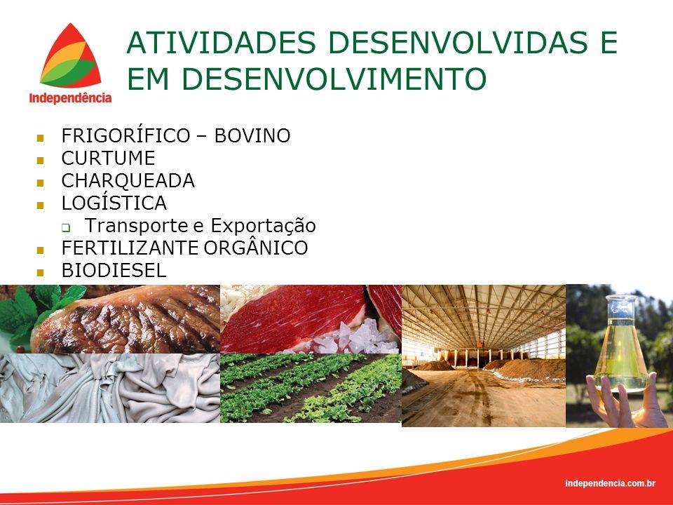 ATIVIDADES DESENVOLVIDAS E EM DESENVOLVIMENTO