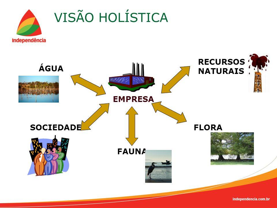 VISÃO HOLÍSTICA RECURSOS NATURAIS ÁGUA EMPRESA SOCIEDADE FLORA FAUNA