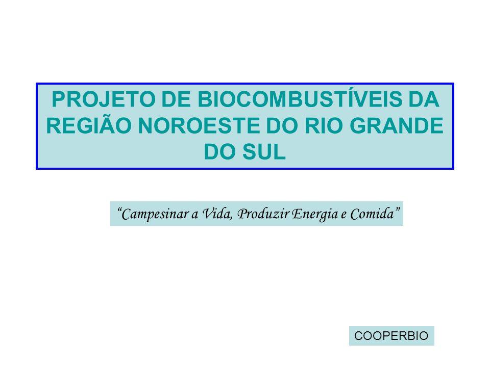 PROJETO DE BIOCOMBUSTÍVEIS DA REGIÃO NOROESTE DO RIO GRANDE DO SUL