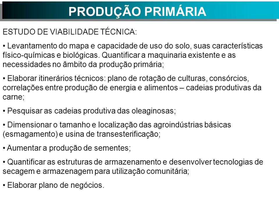 PRODUÇÃO PRIMÁRIA ESTUDO DE VIABILIDADE TÉCNICA: