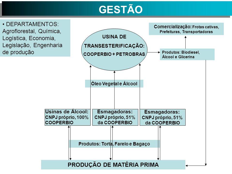 GESTÃO DEPARTAMENTOS: Agroflorestal, Química, Logística, Economia, Legislação, Engenharia de produção.