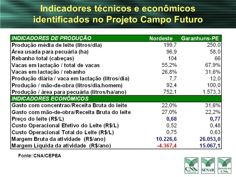Indicadores técnicos e econômicos identificados no Projeto Campo Futuro