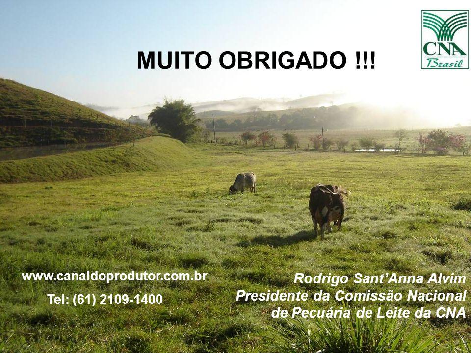 MUITO OBRIGADO !!!www.canaldoprodutor.com.br. Tel: (61) 2109-1400.
