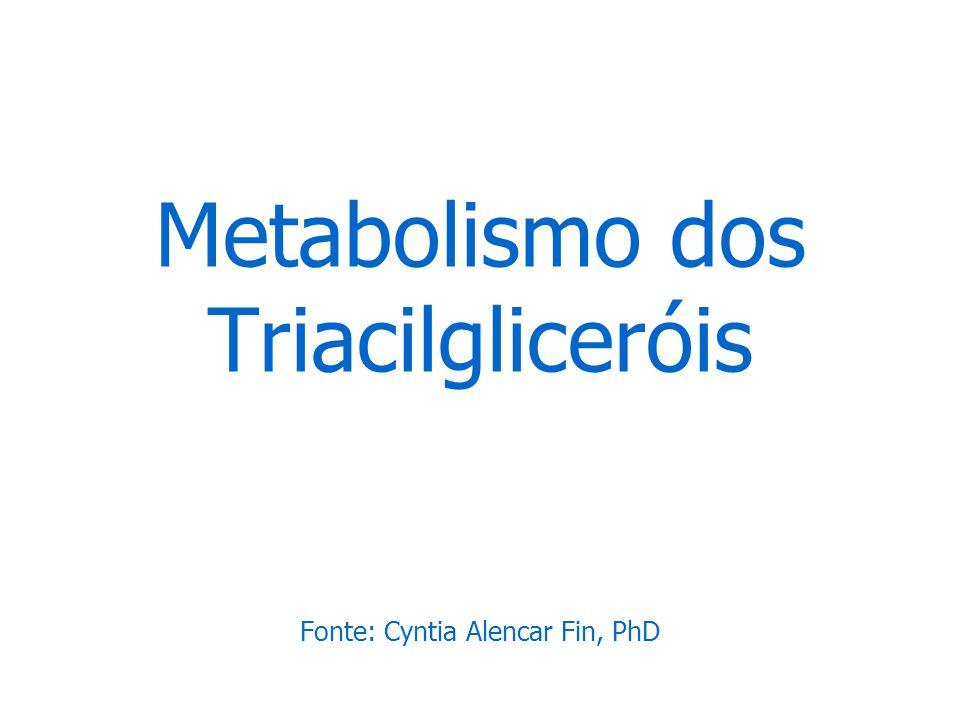 Metabolismo dos Triacilgliceróis