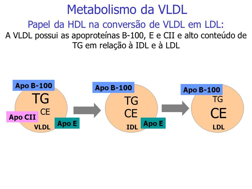 Papel da HDL na conversão de VLDL em LDL:
