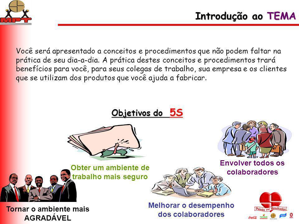 Introdução ao TEMA Objetivos do 5S