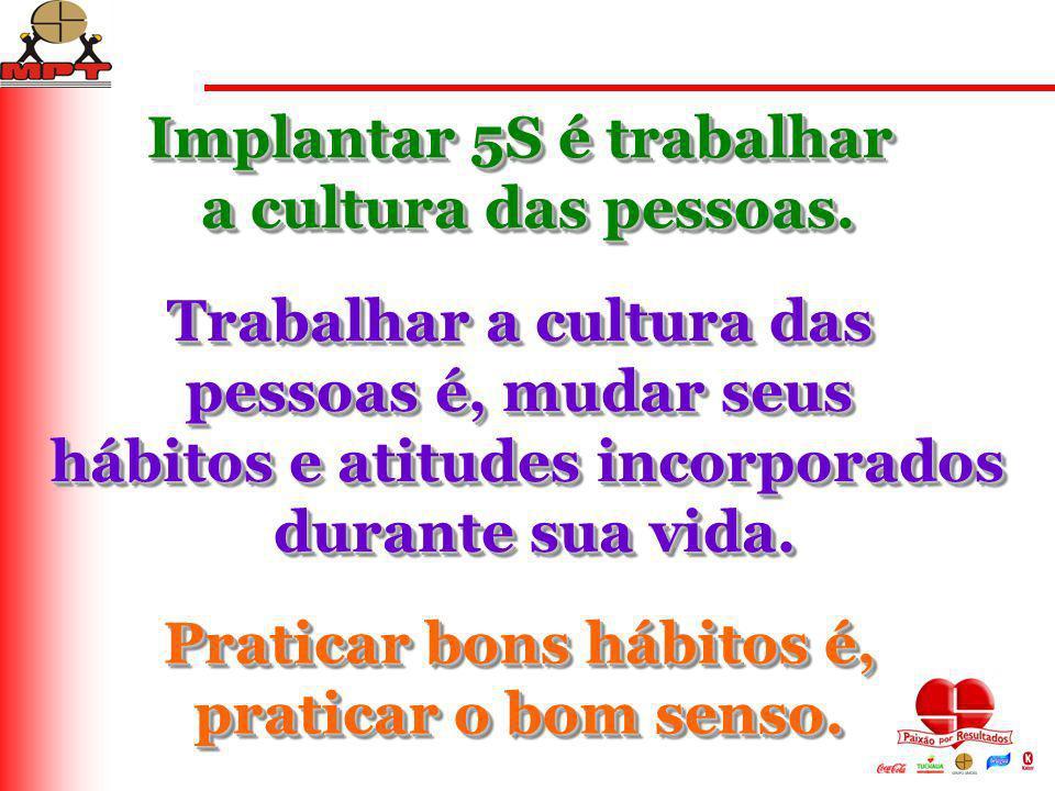Implantar 5S é trabalhar a cultura das pessoas.