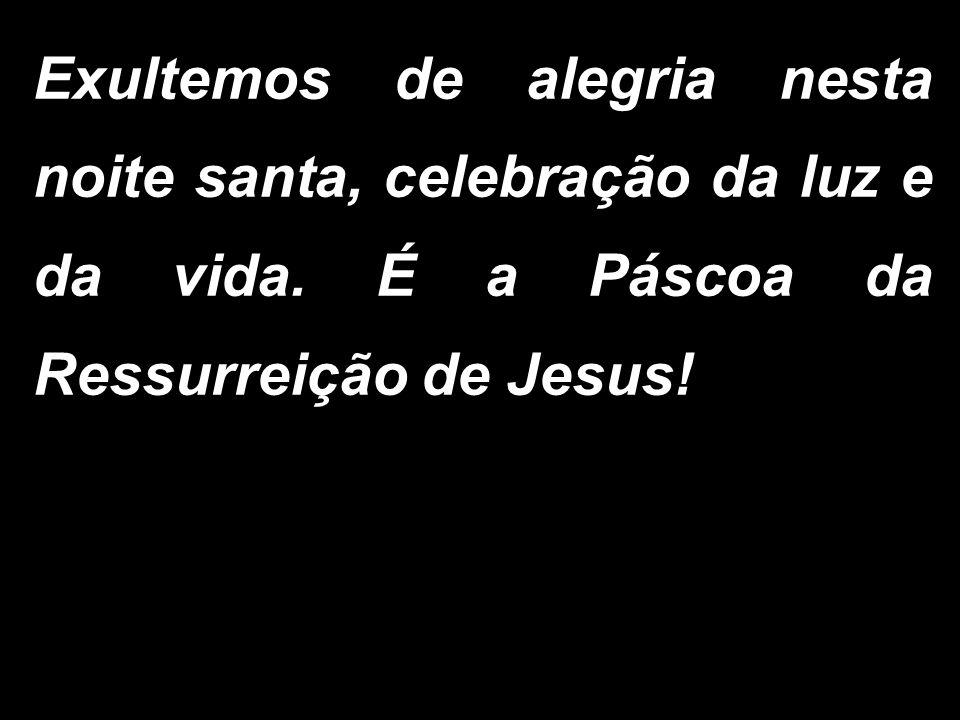 Exultemos de alegria nesta noite santa, celebração da luz e da vida