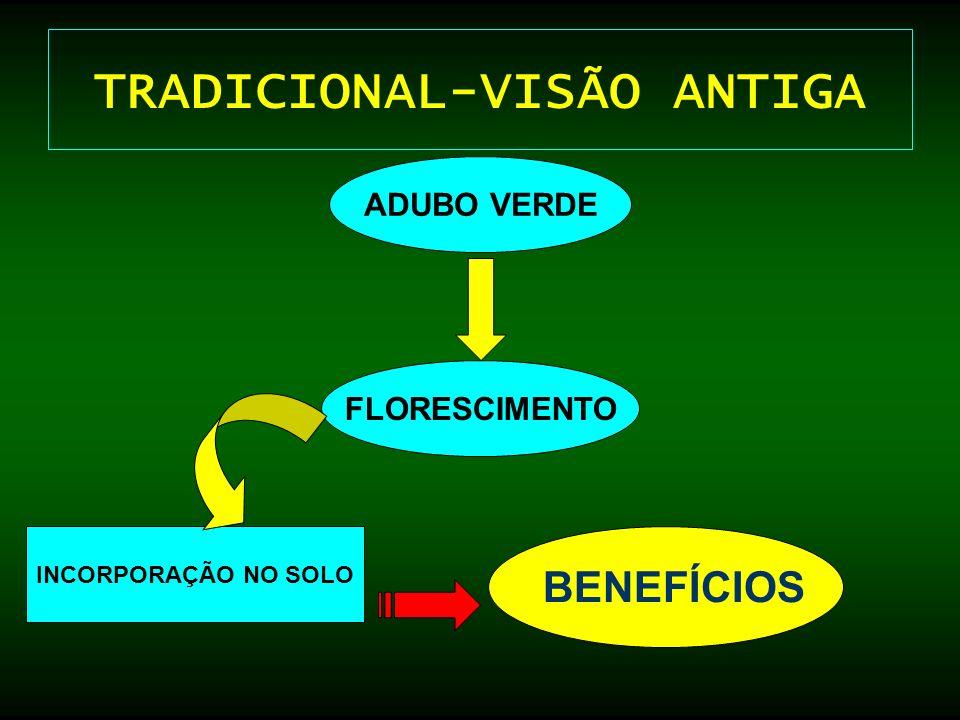 TRADICIONAL-VISÃO ANTIGA