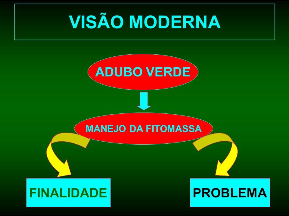 VISÃO MODERNA ADUBO VERDE MANEJO DA FITOMASSA FINALIDADE PROBLEMA