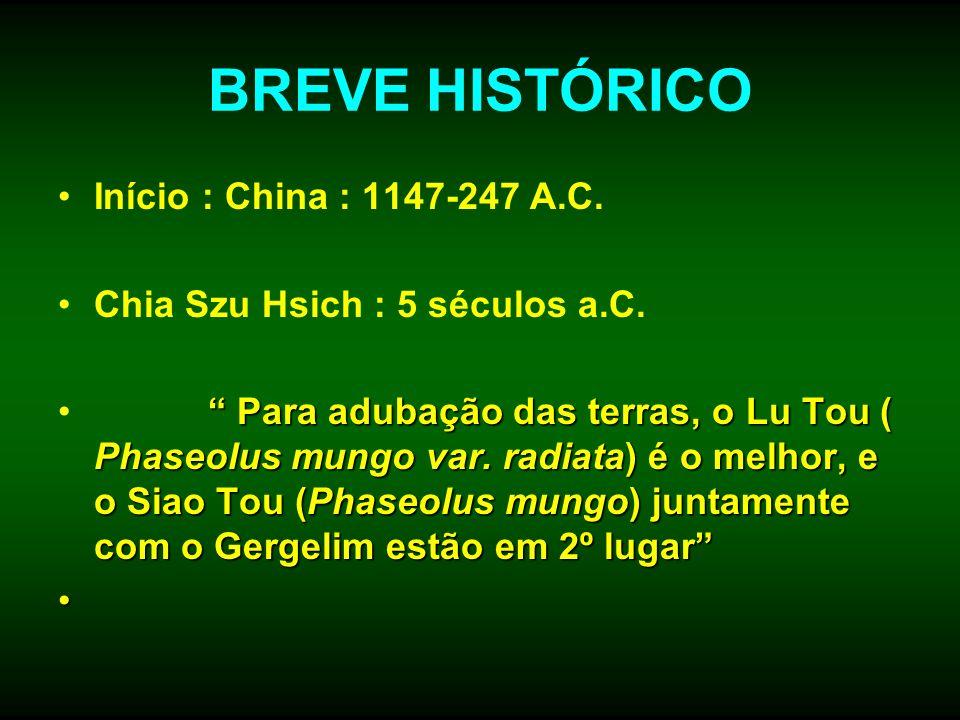 BREVE HISTÓRICO Início : China : 1147-247 A.C.
