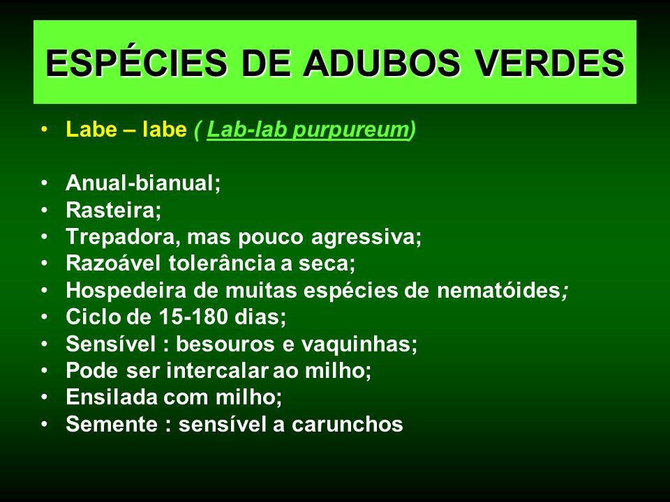 ESPÉCIES DE ADUBOS VERDES