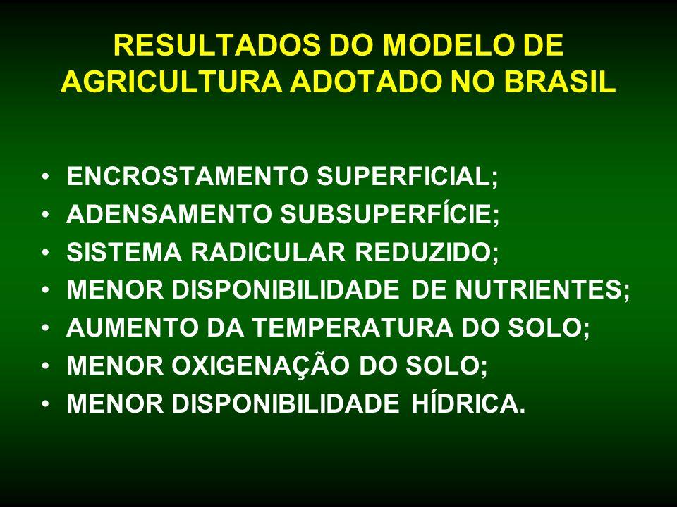 RESULTADOS DO MODELO DE AGRICULTURA ADOTADO NO BRASIL