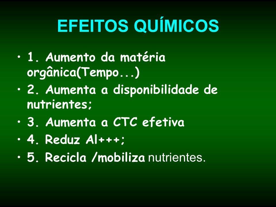 EFEITOS QUÍMICOS 1. Aumento da matéria orgânica(Tempo...)