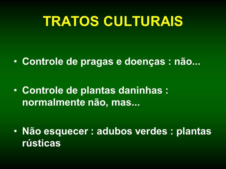TRATOS CULTURAIS Controle de pragas e doenças : não...