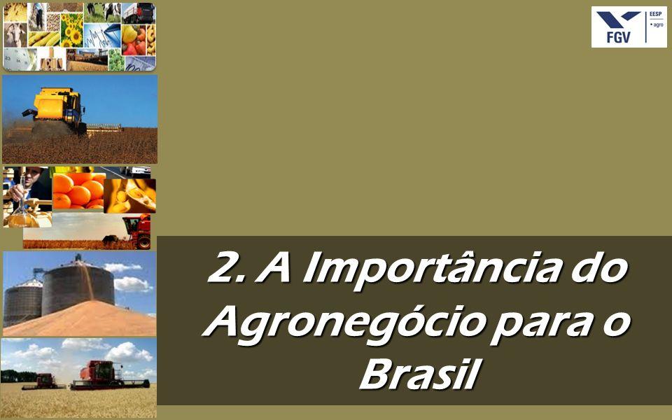 2. A Importância do Agronegócio para o Brasil