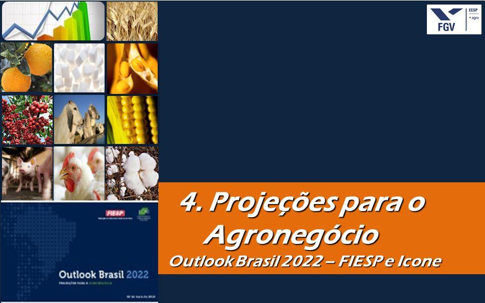 4. Projeções para o Agronegócio Outlook Brasil 2022 – FIESP e Icone
