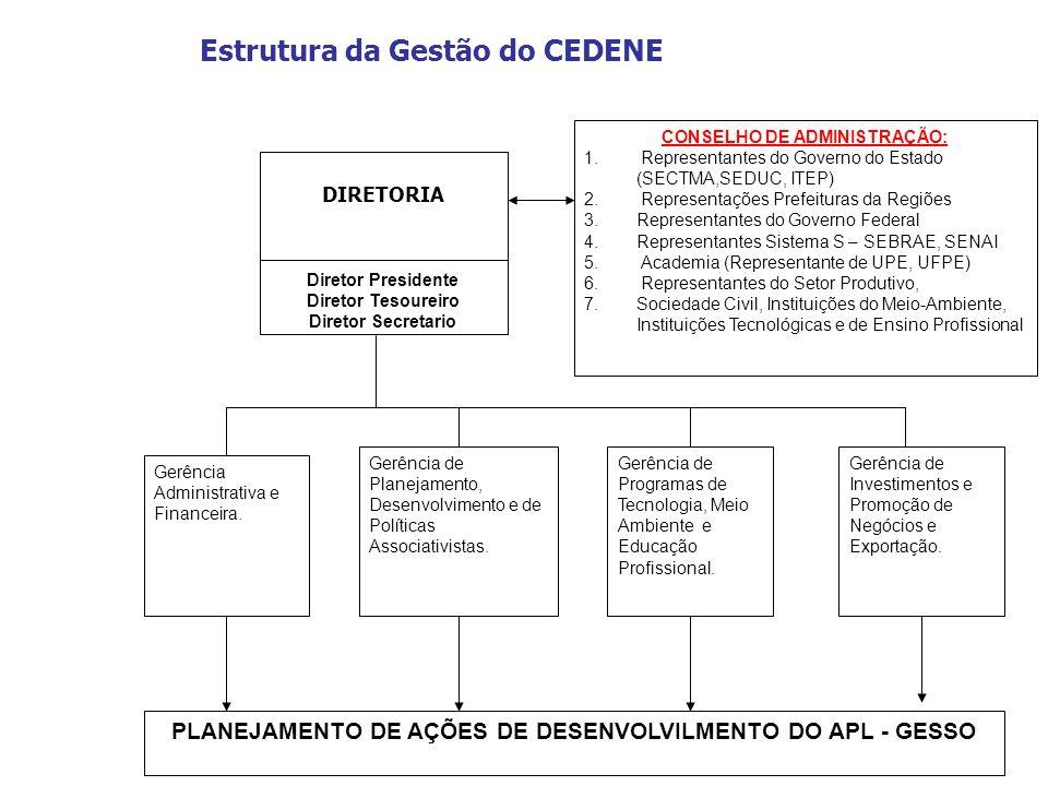 Estrutura da Gestão do CEDENE