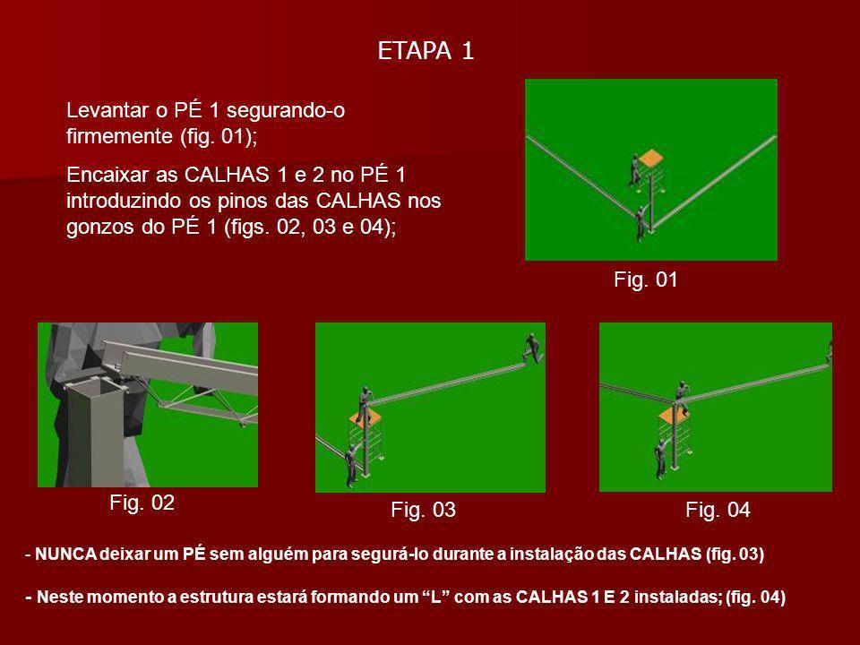 ETAPA 1 Levantar o PÉ 1 segurando-o firmemente (fig. 01);