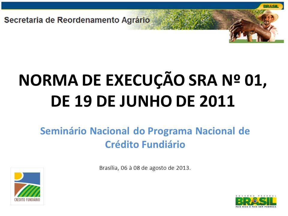 NORMA DE EXECUÇÃO SRA Nº 01, DE 19 DE JUNHO DE 2011