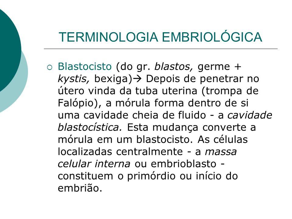 TERMINOLOGIA EMBRIOLÓGICA