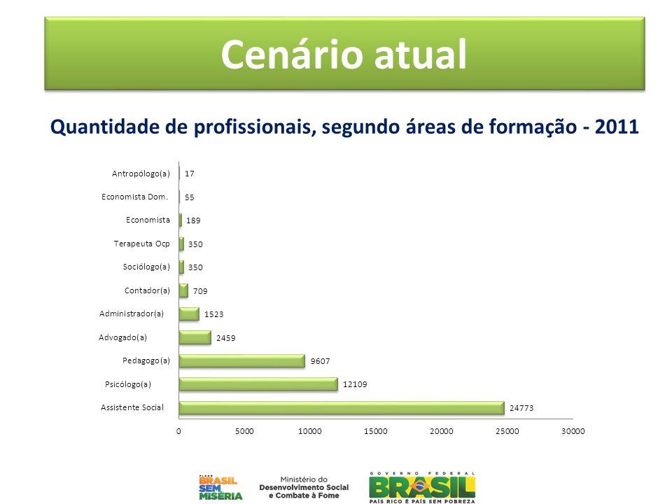 Quantidade de profissionais, segundo áreas de formação - 2011