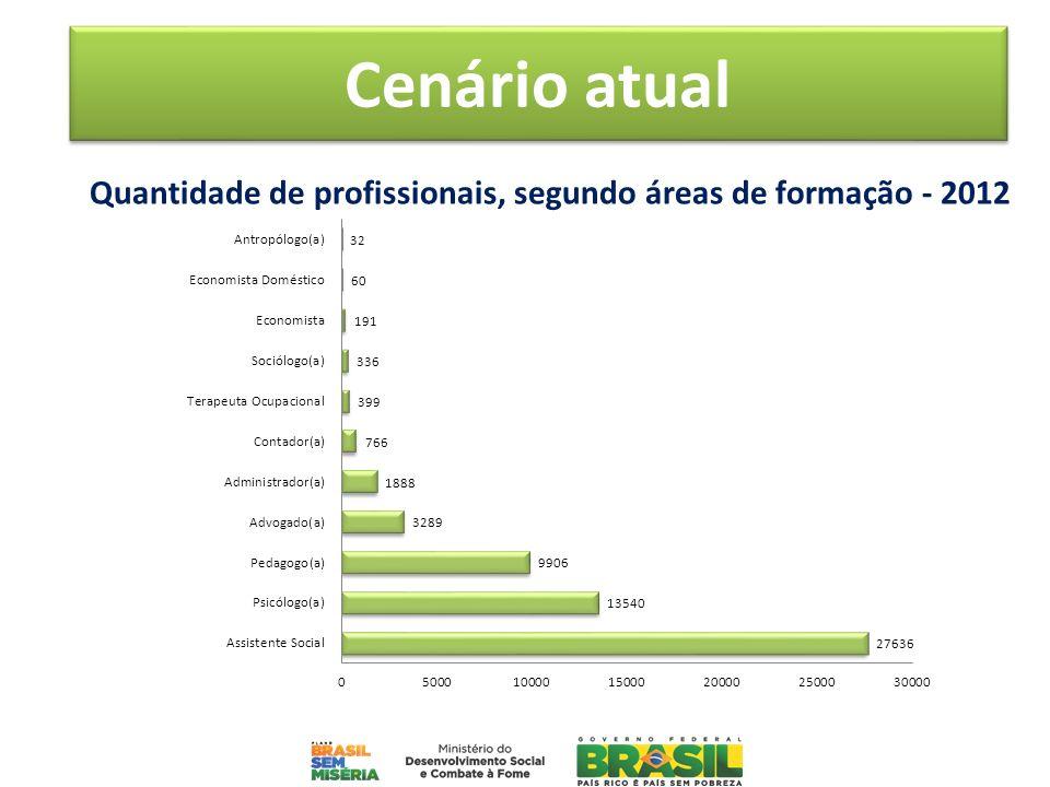 Quantidade de profissionais, segundo áreas de formação - 2012