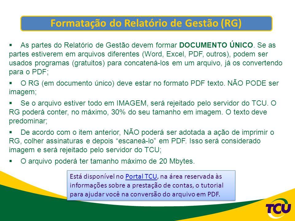 Formatação do Relatório de Gestão (RG)