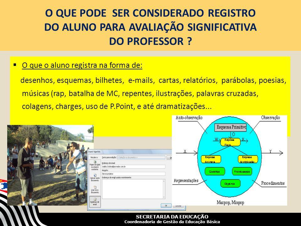 O QUE PODE SER CONSIDERADO REGISTRO DO ALUNO PARA AVALIAÇÃO SIGNIFICATIVA DO PROFESSOR