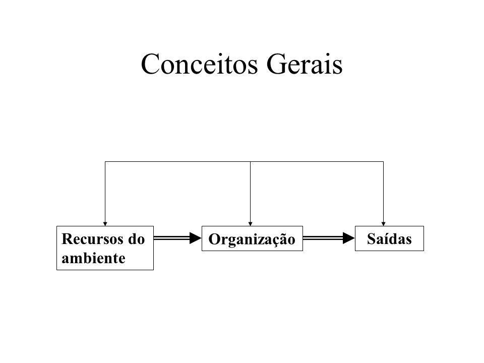 Conceitos Gerais Recursos do ambiente Organização Saídas
