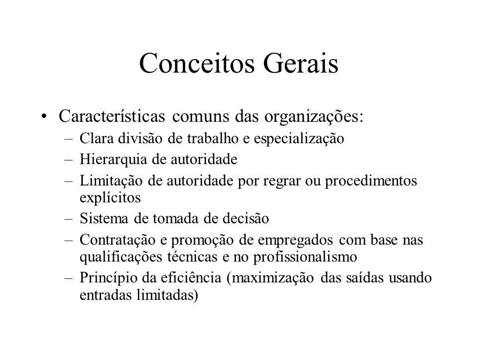 Conceitos Gerais Características comuns das organizações: