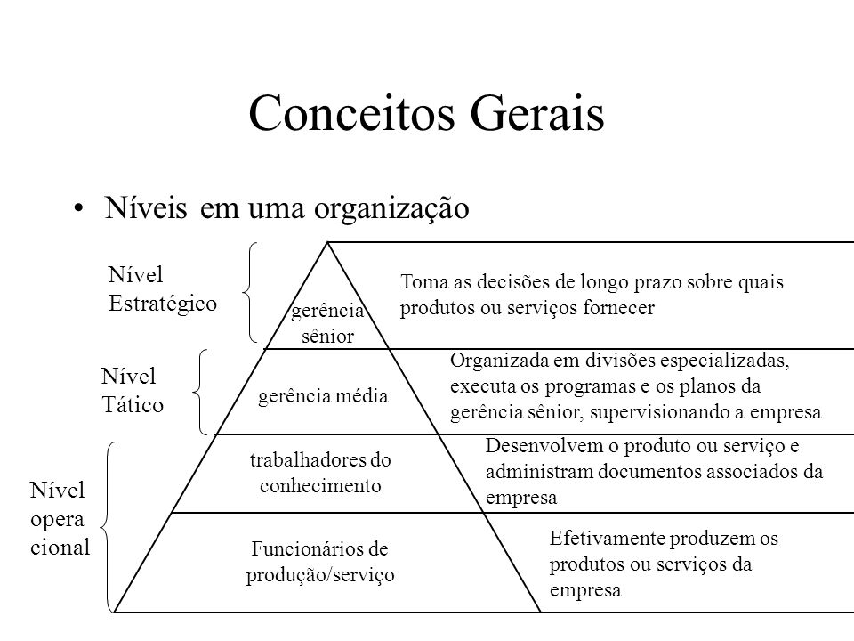 Conceitos Gerais Níveis em uma organização Nível Estratégico