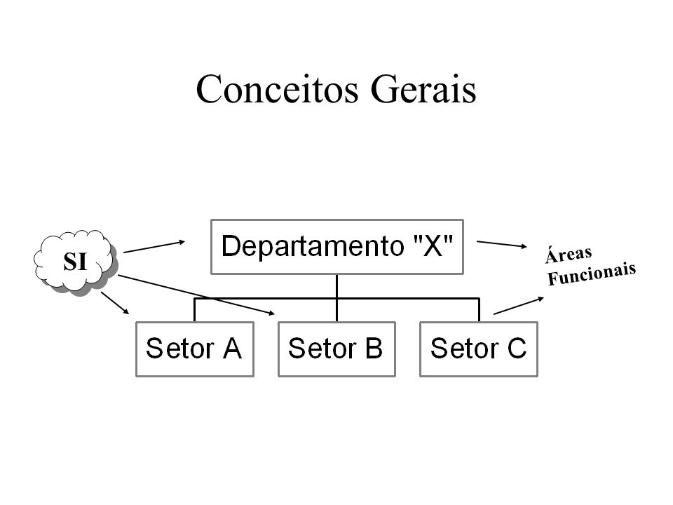 Conceitos Gerais Áreas Funcionais SI