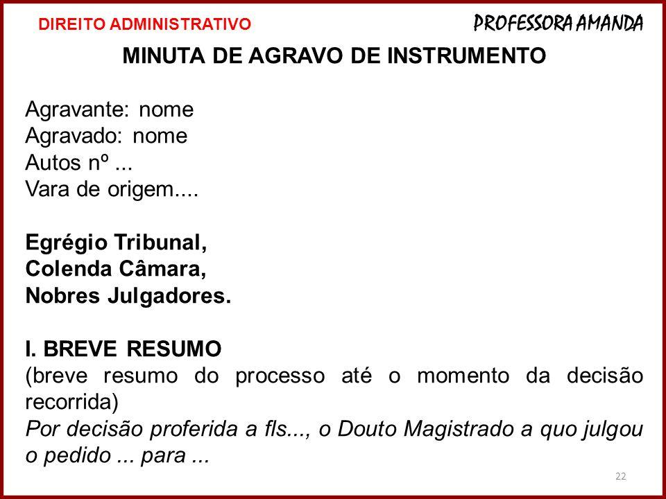 MINUTA DE AGRAVO DE INSTRUMENTO