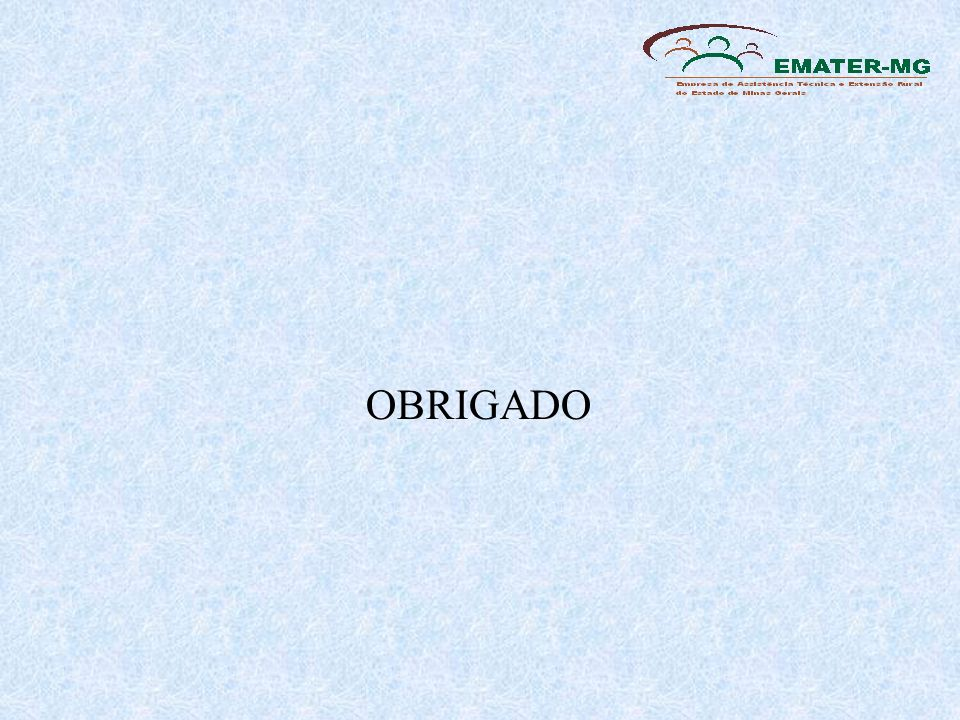 OBRIGADO 21