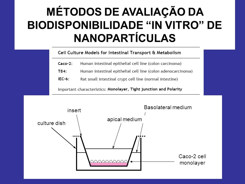 MÉTODOS DE AVALIAÇÃO DA BIODISPONIBILIDADE IN VITRO DE NANOPARTÍCULAS