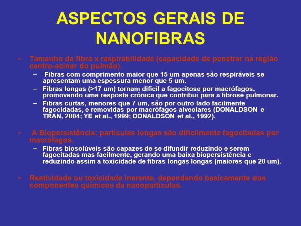 ASPECTOS GERAIS DE NANOFIBRAS