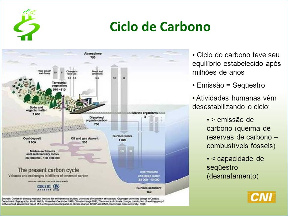 Ciclo de Carbono Ciclo do carbono teve seu equilíbrio estabelecido após milhões de anos. Emissão = Seqüestro.