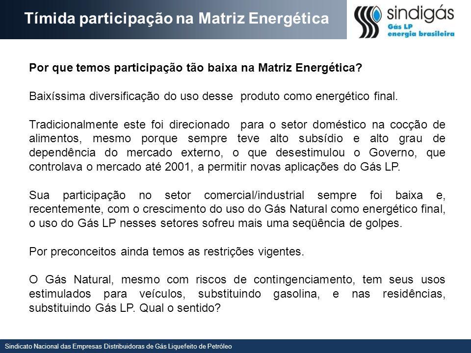 Tímida participação na Matriz Energética