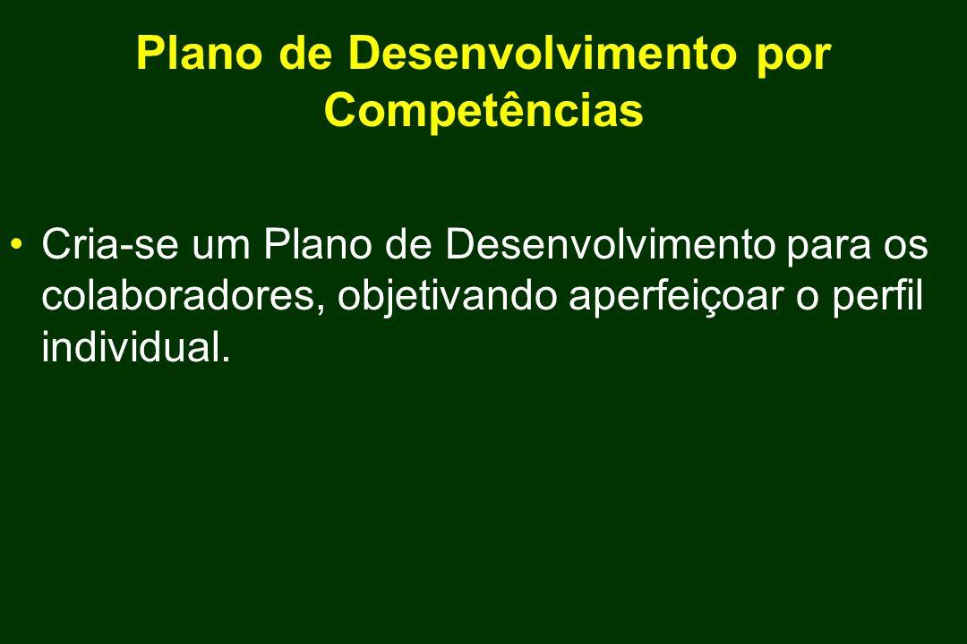 Plano de Desenvolvimento por Competências