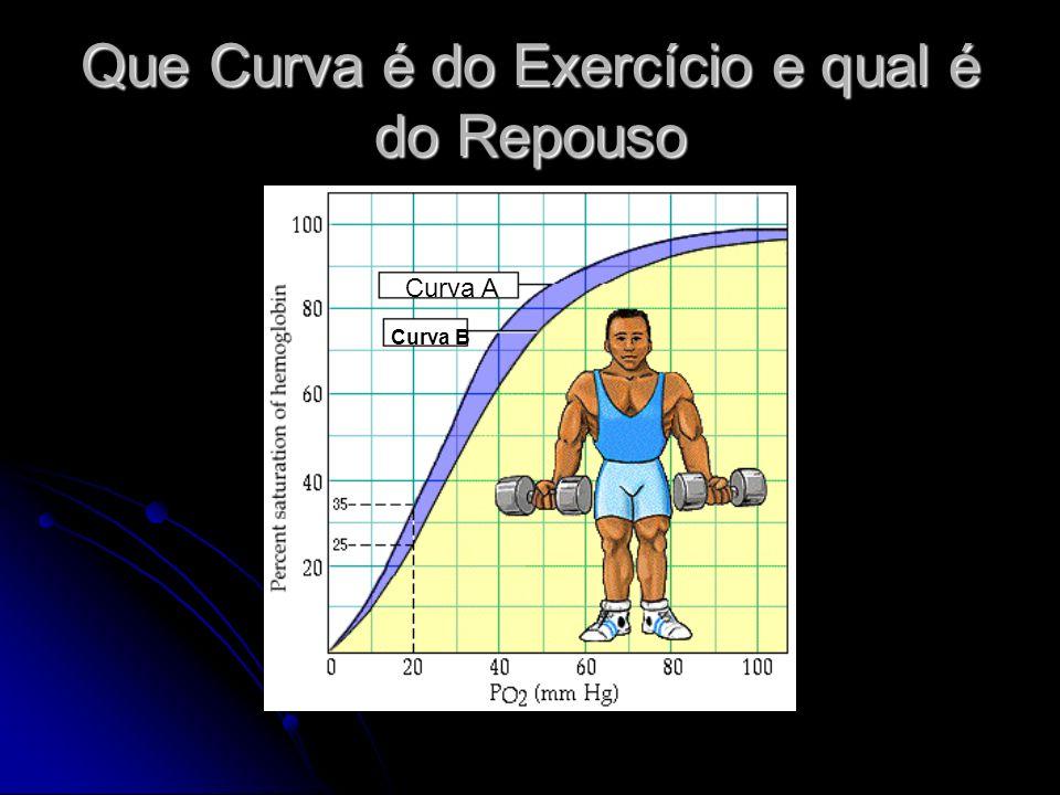 Que Curva é do Exercício e qual é do Repouso